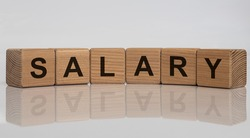 Salary - words from wooden blocks with letters, a regular payment salary concept, white grey glossy background with reflection