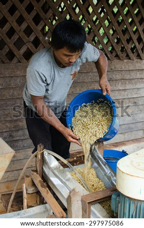SALAVAN, LAO PDR - NOVEMBER 8 : Unidentified coffee farmers wash and dry coffee beans.( wet processing ) , November 8 , 2014 ,Salavan, Lao pdr.