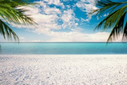 Salda lake with white sand and green water With Palm leaves on the scene like Maldives. Yesilova Burdur Turkey.