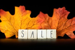 Sale and Blackfriday concept text with autumn discount sale,Seasonal Offer on black background with colorful autumn leafs closeup