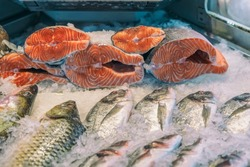 Sale of fresh frozen fish on farmer's bazaar. Open showcases of seafood market. Fish store. Fresh salmon on ice in supermarket close-up