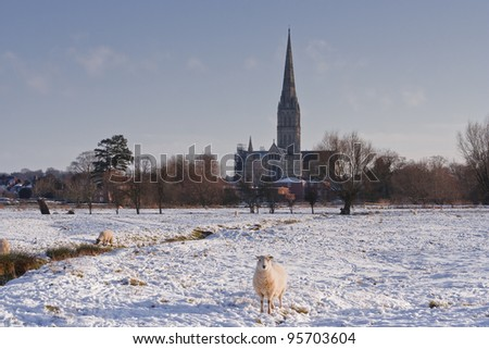 Salisbury cathedral and the water meadows during some January snow.