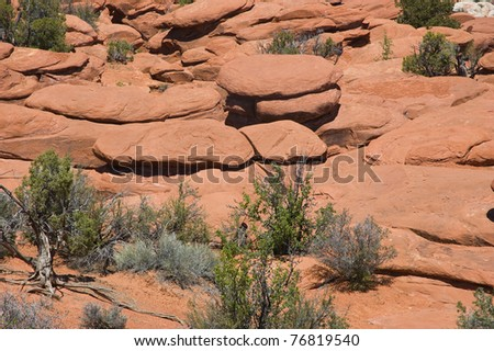 Salmon colored Entrada Sandstone at Arches National Park, Moab, Utah