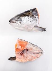Salmon Fish Head, cut half, flat lay on white background
