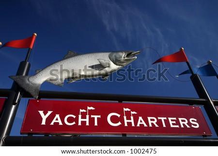Salmon Fishing Charters