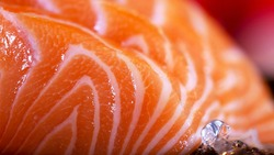 Salmon sashimi. Natural Salmon Fillet Texture or Pattern Closeup. Macro Photo Fresh Orange Fish Background. Japanese foods concept.
