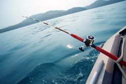 Salmon trolling in Sea Japan. Early in the morning.