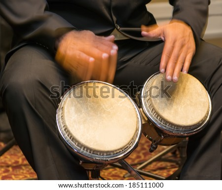 Salsa musician playing the bongos a percussion instrument traditional for the Caribbean and Latin American music