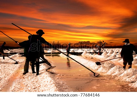 Salt farm in Thailand - stock photo