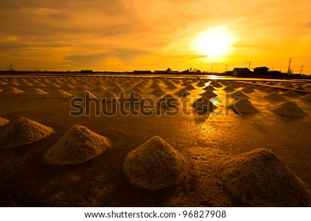 Salt fields in thailand