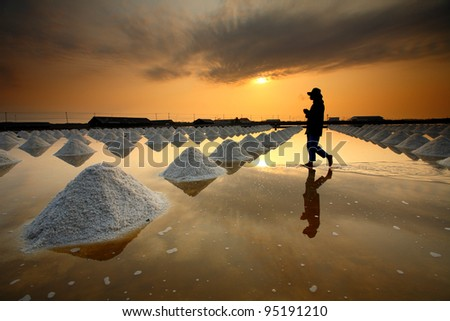 Salt fields, Phetchaburi, Thailand