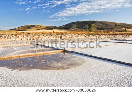 Salt flat of Imon, Guadalajara (Spain)