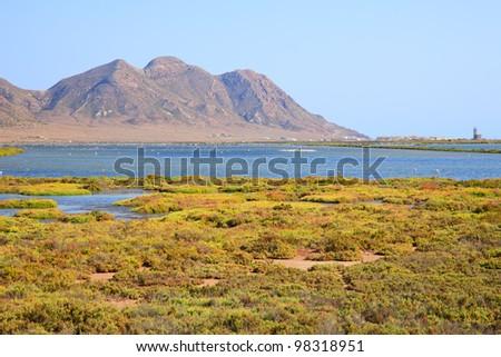 Salt flats lagoon and Flamingos. Cabo de Gata - Nijar Park is Andalusia \'s largest protected area. Spain, Europe. Unesco biosphere.