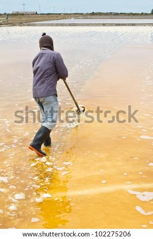 Salt harvesting