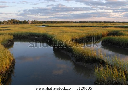 Salt Marsh at Sunset