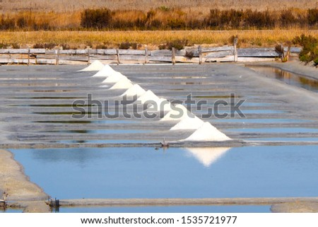 Salt marshes on the island of Noirmoutier, in the west of France, on the Atlantic coast Photo stock ©