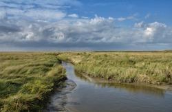 Salt Meadow at North Sea in Sankt Peter-Ording,Schleswig-Holstein,Germany