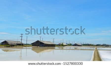 Salt pan with blue sky located at Samutsongkram province during summer time of Thailand,South East Asia, Asia.
