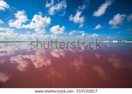 Shutterstock Salt pink lagoon in Las Coloradas, Yucatan, Mexico