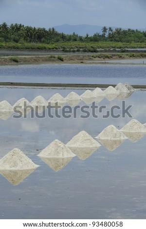 salt , saline