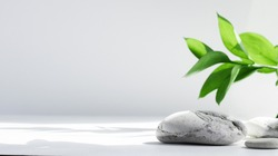 Salt stones and green Leaves of riskus in the sun, with shadows, on a white gray concrete background with copy space. Advertising background concept for cosmetics, fashion, spa. Banner