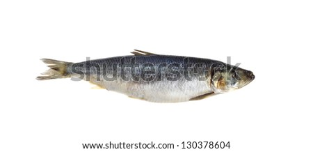 Salted herring isolated on white background - stock photo