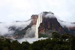 Salto Angel waterfall after a rainy night. The Salto Angel is the highest waterfall in the word with 979 meter. Canaima, Venezuela.