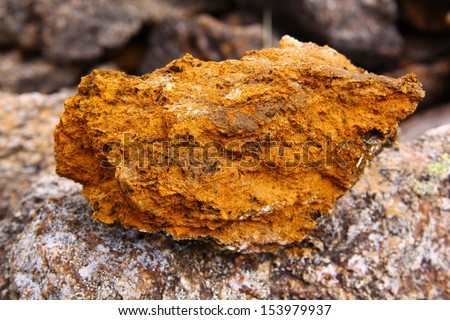 Gold Ore Quartz Sample Gold-Bearing