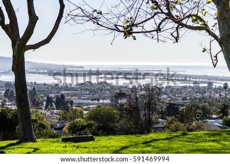 San Diego Bay from Kate Sessions Park #591469994