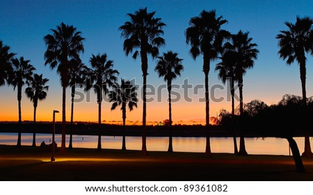 San Diego Sunset and Palm Trees at Mission Bay San Diego, California
