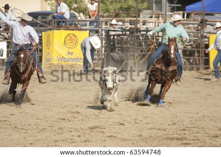 SAN DIMAS, CA - OCTOBER 2: Cowboys Travis Gorham and Tim Zigrang compete in the Team Roping event at the San Dimas Rodeo on October 2, 2010 in San Dimas, CA.