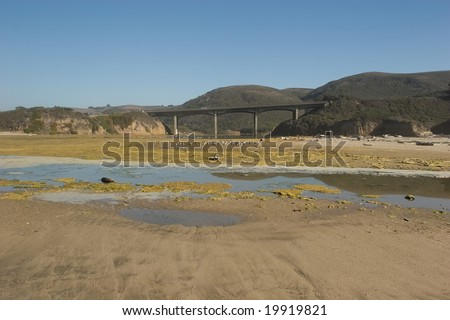 San Gregorio State Beach is a beach near San Gregorio, California, USA, south of Half Moon Bay.