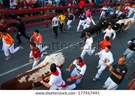SAN SEBASTIAN DE LOS REYES, SPAIN - AUGUST 30: Encierro in August 30, 2013 in San Sebastian de los Reyes, Spain. Running crowd of people and bulls
