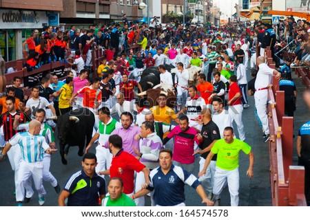 SAN SEBASTIAN DE LOS REYES, SPAIN - AUGUST 30: Encierro - Running of the Bulls in August 30, 2013 in San Sebastian de los Reyes, Spain. Running crowd of people and bulls