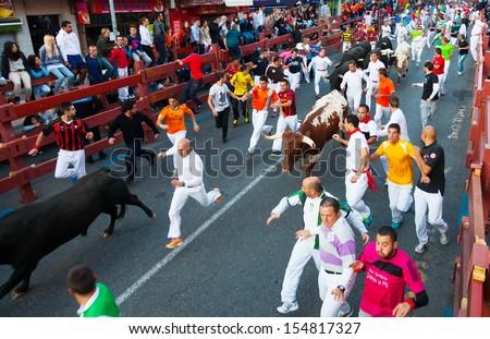 SAN SEBASTIAN DE LOS REYES, SPAIN - AUGUST 30:  Running of the Bulls in August 30, 2013 in San Sebastian de los Reyes, Spain. Running crowd of people and bulls