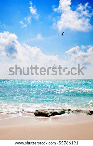 Sand and beach in front of Caribbean Ocean with two birds flying in the sky
