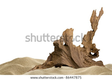 Sand and driftwood for aquarium background