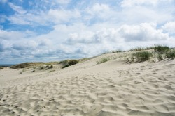 Sand and grass of Dunes at national park of Curonian Spit, Lithuania on cloudy day.