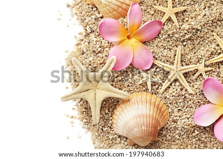 sand and seashells frame isolated on white background. summer border