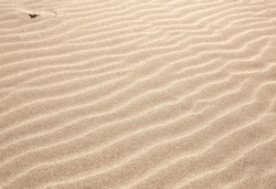 sand as a backdrop. dune