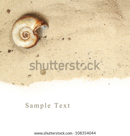 sand background and white space for text