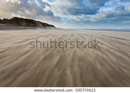 Sand blowing over the beach near the sea #100759621