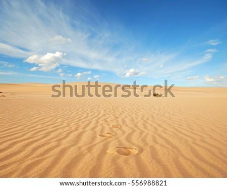 sand desert #556988821
