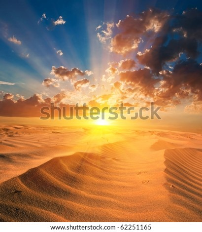 sand desert at the sunset
