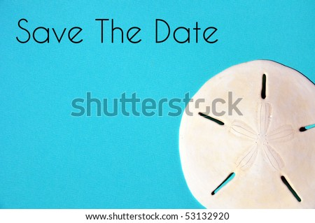 Sand Dollar on pretty blue background. Party / wedding invitation concept - stock photo