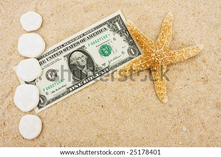 Sand dollars making a border with a dollar bill on sand background, sand dollar border