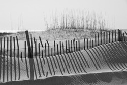 Sand dune, fence and shadows on beach