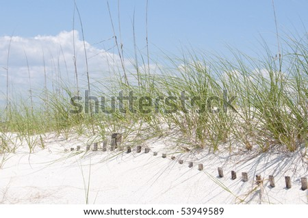 Sand dune fence buried on beach - stock photo