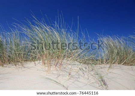 Sand dune in front of bright blue sky