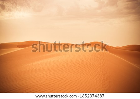 Sand dune in Saudi desert - Beautiful Arabian desert